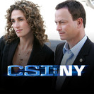 Csi: NY: Past Imperfect